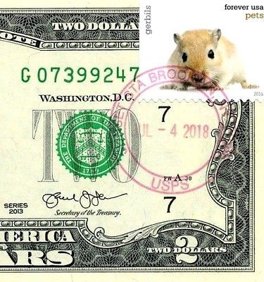 MONEY US $2 DOLLARS 2013 STAMP CHICAGO CANCEL LOVE PETS GERBILS GEM UNC image 3