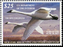 RW83, VF Mint NH 2016 Trumpeter Swans Federal Duck Stamp - Stuart Katz - $73.95