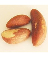 Brazil Nuts (3 One Pound Bags) - $24.27