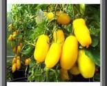 S l500 thumb155 crop