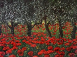 Papaveri sotto gli ulivi   by Tebo Marzari 24x32 Poppies Red Flowers Canvas - $246.51