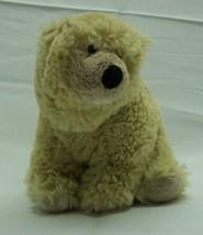 """Ty Beanie Baby SOFT PARKA THE TAN BEAR 6"""" Bean Bag Stuffed Animal Toy 2006 - $14.85"""