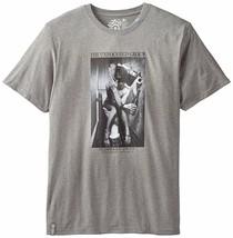 LRG The Unfocused Groupe T-Shirt Gris Bruyère