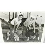 1946 Press Photo ATOMIC POWER TESTS 9/24/46 8 X 8 Pig Goat USS Burleson Bikini - $26.75