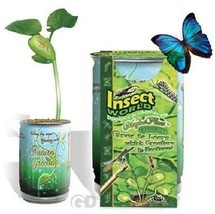 Magic Plant Insect World Bean Seed Plant Message Word Nature's Greeting ... - £7.12 GBP