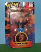 1998 WCW Raven Power Punch Portland Wrestling S... - $10.00