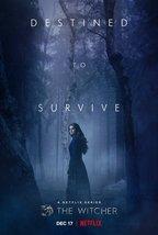 The Witcher Poster Netflix Henry Cavill TV Series Season 2 Netflix Art P... - $10.90+