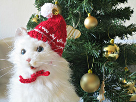 Cat christmas hat Santa cat costume Dog christmas hat Pet Santa hat Dog ... - $14.39