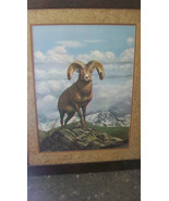 ROCKY MOUNTAIN BIG HORN SHEEP FRAMED PRINT by RAY HARM, FROM 1976, LTD. ... - $408.38