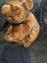 "Gund Collectors Classic Teddy Bear Vintage 1987 Large 20"" Brown Walking Sitting image 2"