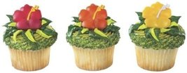 CakeDrake HIBISCUS Tropical (12) LUAU Hawaiian PARTY Cupcake Cake Topper... - $2.99