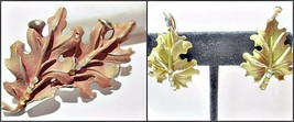 Signed Bsk Brown Painted Large Oak Leaf Pin Rhinestones Distressed W Earrings - $18.00