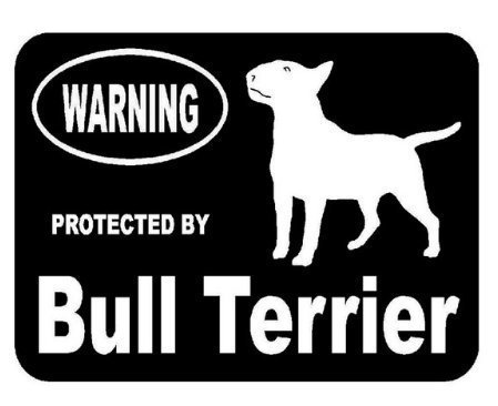 DOG - Protected by Bull Terrier Car Styling Vinyl Sticker 5 1/2 x 4 inch Shipped