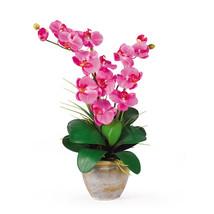 Double Stem Phalaenopsis Silk Orchid Arrangement - $51.41