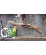 DRIFTWOOD FOR AQUARIUM CRAFTS WALL ART REPTILES FROM ROCKY MOUNTAINS USA... - $5.95