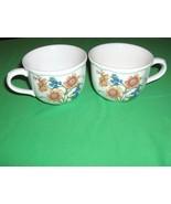 2 Noritake  China Coffee Tea Cups Coreop Gourmet Garden Casual Gourmet NICE - $24.74
