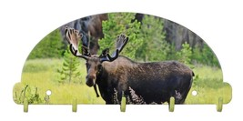 Bull Moose Key Rack 5 Hook Metal Wall Art Lodge USA Made 2016 - $29.69