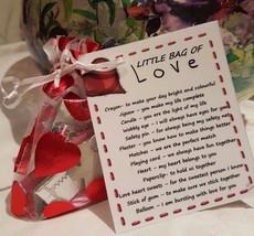 Valentines Survival Kit -Little Bag of Love - Novelty Gift for a Loved One - $5.09