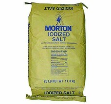 Morton Iodized Table Salt Bulk 25 lb.(11.3 kg) Bag - $44.50