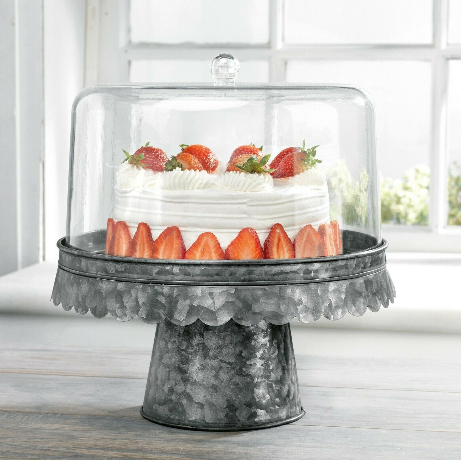 "Primary image for FIDDLE & FERN 12""D ACRYLIC CAKE DOME/BLACK GALVANIZED BASE"
