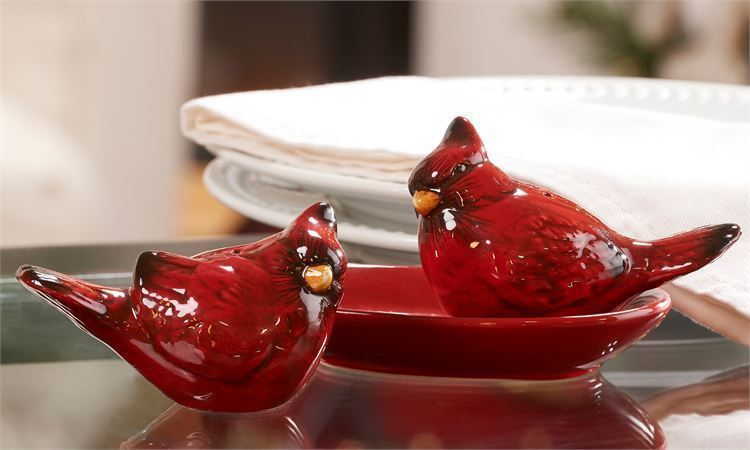 Cardinal Bird Salt & Pepper Shakers Set with Oval Tray Red Ceramic