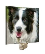Border Collie Archie - Night Light by Doggylips - $19.55