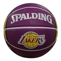 Spalding Los Angeles Lakers 7-inch Mini Basketball - $27.84