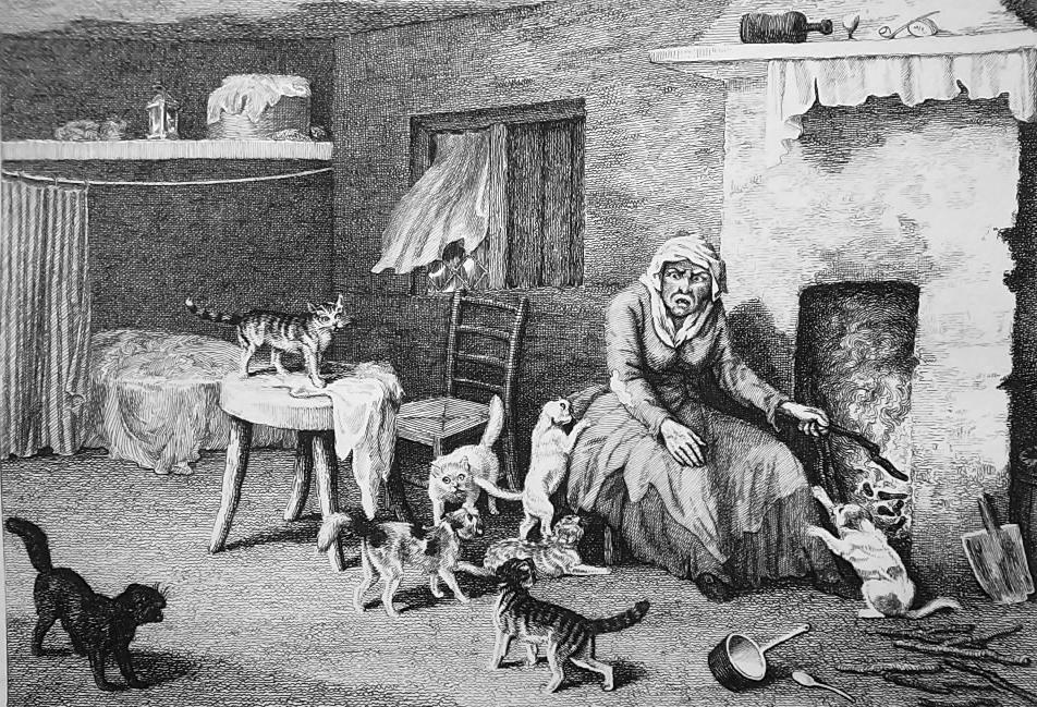 CATS Inside Cottage of Old Woman - 1811 Original Etching Print