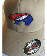 Embroidered Bears Picnic Flex Fit Caps Center Logo - $25.00