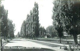 Carson Indian Agency Stewart Tree Lined Street Real Photo RPPC Postcard ... - $12.00