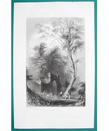 MOUNT VERNON VA Tomb of George Washington - 1856 Engraving Print by BART... - $8.96