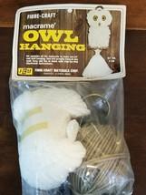 Macrame Owl Wallhanging Kit Vintage 70's Fibre Craft 2129 24 inch - $17.49