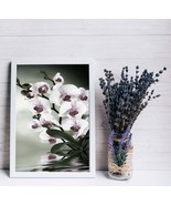 FLOWER Print Set, Print Digital Download 2020, Wall Art Poster, Floral P... - $1.10