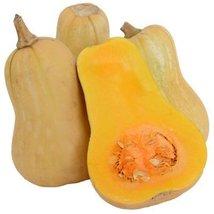 1 Oz Organic Seeds of Waltham Butternut Squash Conventional & Organic - $33.56