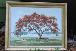VTG Original Oil Painting by Kurt Griesshaber Royal Poinciana in Flower ... - $764.73