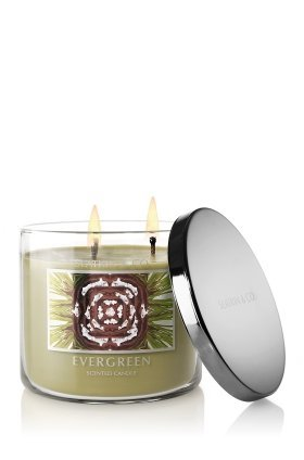 Bath & Body Works Slatkin & Co. EVERGREEN Scented Candle 14.5 oz
