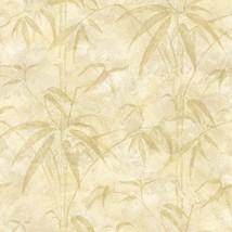Kathy Ireland Beige Bamboo on Beige on Easy Walls Wallpaper NL58092 - $23.50