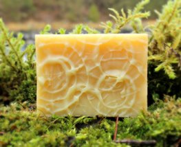 Oasis (Rosemary Peppermint) Shampoo Bar - Organic, Probiotic, & Medicinal - $15.00