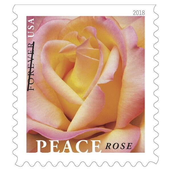 2018 50c Peace, Rose Blossom Scott 5280 Mint F/VF NH