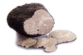 20g Black Truffle (Tuber Aestivum) March 2019 harvest - $31.67