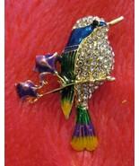 Costa's Hummingbird Rhinestone Lapel Pin - $7.50