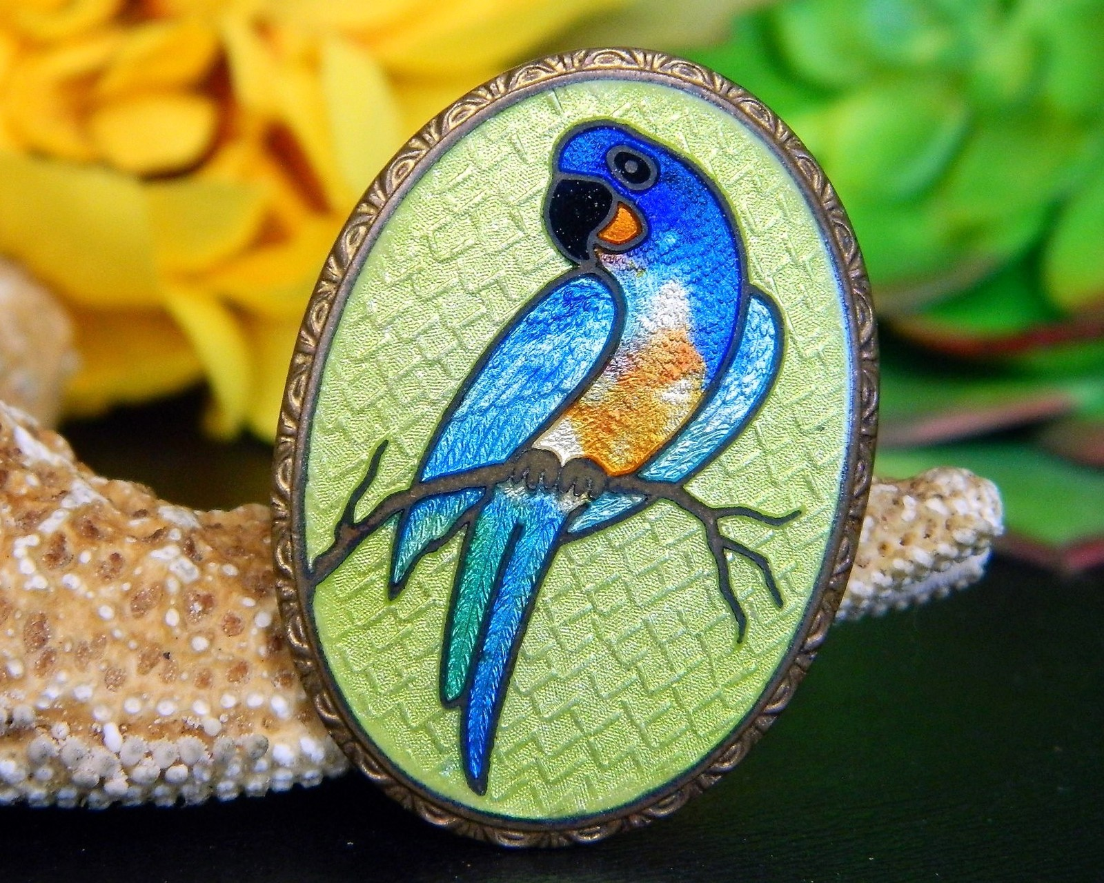 Primary image for Vintage Parrot Macaw Bird Guilloche Cloisonne Oval Brooch Pin Enamel
