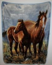 Northwest Company 2 Horse Landscape Plush Fleece Blanket Throw James Hau... - $24.74