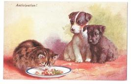 Anticipation Puppies Kitten Food Artist Signed CT Howard Vintage Salmon Postcard - $6.69
