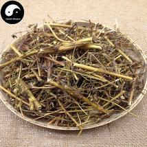 Qing Ye Dan 青葉膽, Herba Swertiae Mileensis, Mile Swertia Herb 200g - $19.99