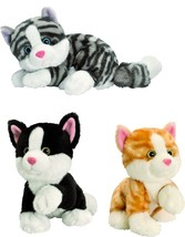 keel toys new 25cm posing sparkle eye cats range choice six one supplied - $9.99