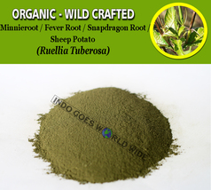 POWDER Minnieroot Fever Root Snapdragon Root Sheep Potato Ruellia Tuberosa - $7.85+