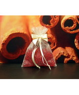 Cinnamon Stick Aroma Bead Sachets (Set of 2)  GREAT In THE CAR Air Fresh... - $6.00