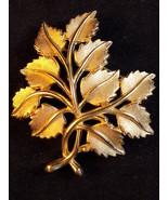 """Vintage TRIFARI BROOCH LEAF CLUSTER Gold Tone DESIGNER LAPEL BROOCH 2.5""""... - $21.77"""