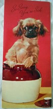 Vintage Little Dog In Jar So Sorry Your Sick Card 1960s - $3.99
